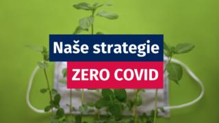 Bezkovidová strategie | PRACOVNÍ NÁVRH